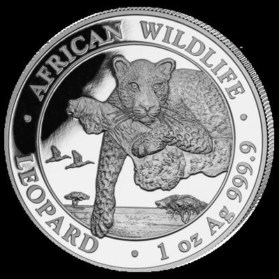 Stříbrná mince Leopard 1 Oz 2020 (African Wildlife Series)