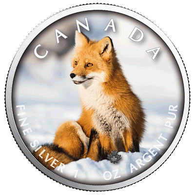 Stříbrná mince Maple Leaf - Red Fox (Liška obecná) 1 Oz 2019 (On the Trails of Wildlife) - (2.)