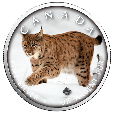 Stříbrná mince Maple Leaf - Lynx (Rys) 1 Oz 2019 (On the Trails of Wildlife) - (8.)