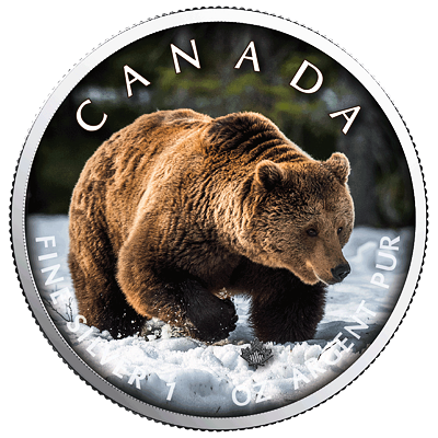 Stříbrná mince Maple Leaf - Grizzly 1 Oz 2019 (On the Trails of Wildlife) - (3.)