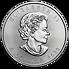 Stříbrná mince 5 CAD Maple Leaf 1 Oz