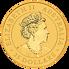 Investiční zlato - zlatá mince 25 AUD Australian Kangaroo (Klokan rudý) 1/4 Oz 2020